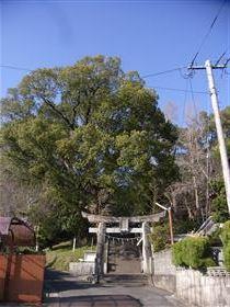 木葉宇都宮神社